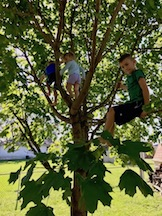 Hazel in the middle of a tree with Dean and Logan on each side