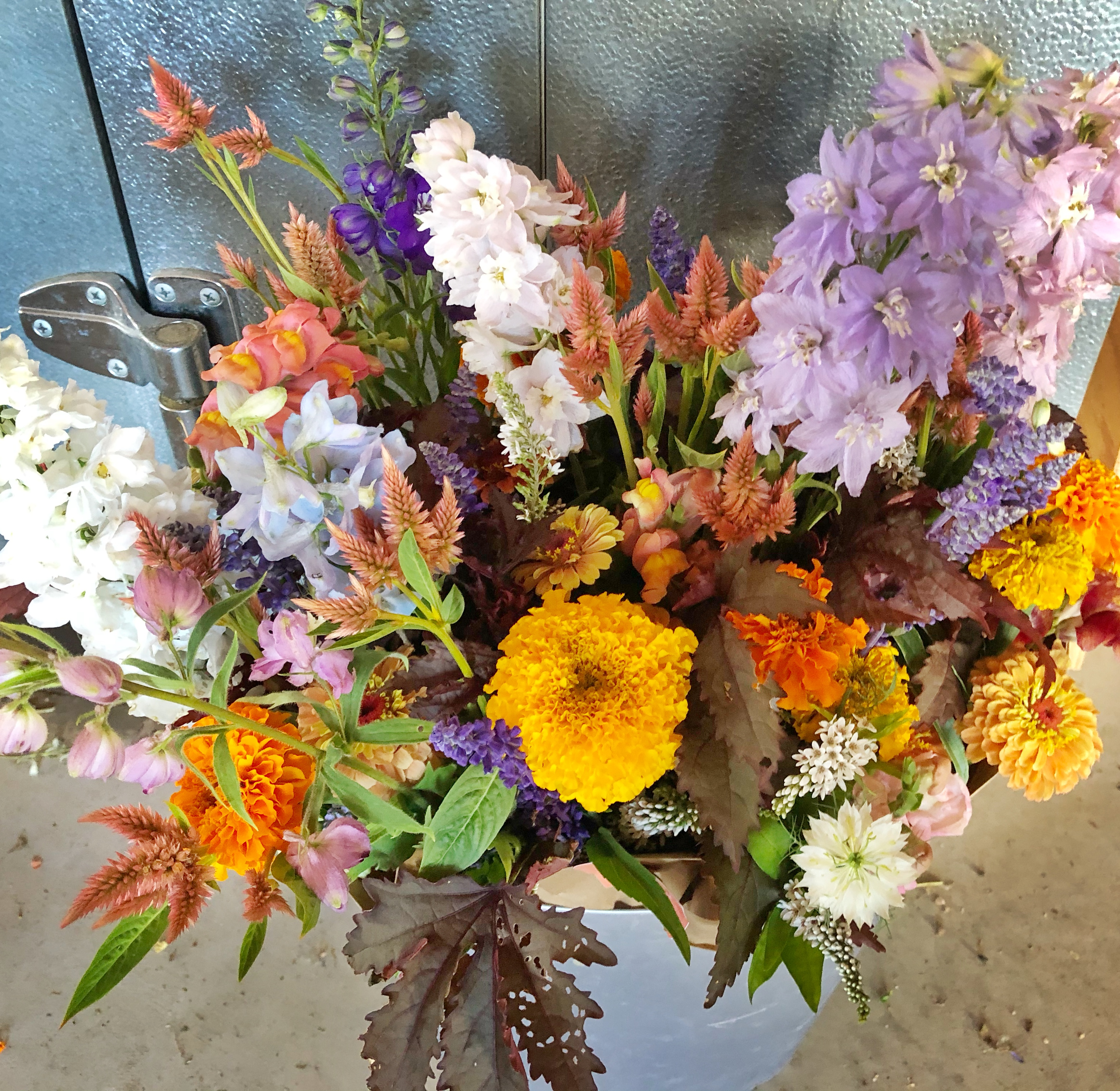 bucket of 6 bouquets with purple, blue and orange flowers featuring delphinium, marigold and celosia