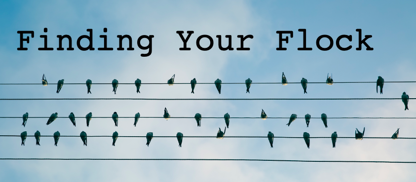 Finding Your Flock with birds on power lines.