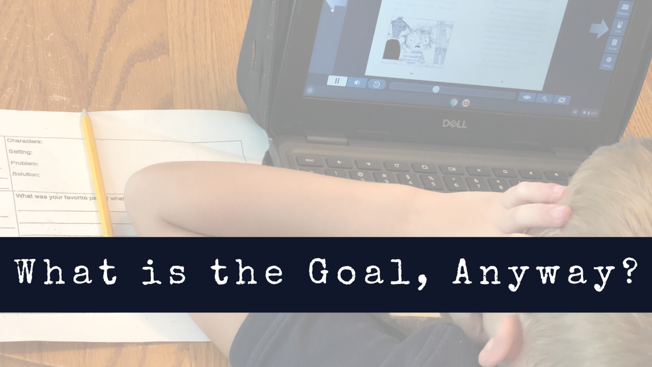 What is the Goal, Anyway?